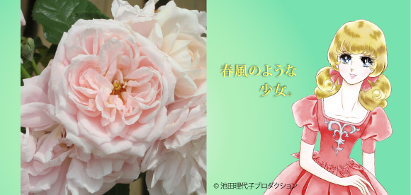 京成バラ園芸株式会社ベルサイユ...