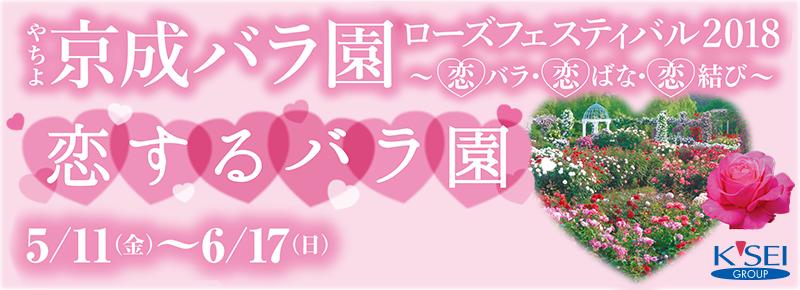 ローズフェスティバル2018 ~恋バラ・恋ばな・恋結び~
